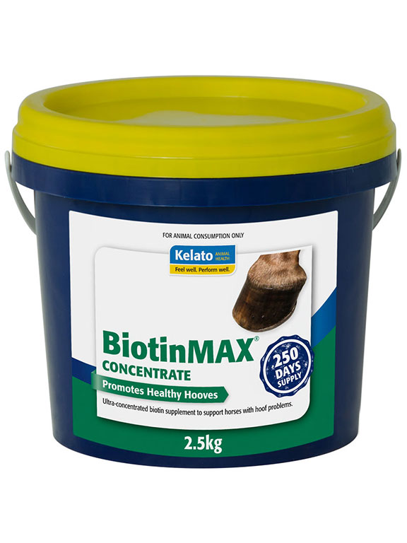 BiotinMAX Concentrate